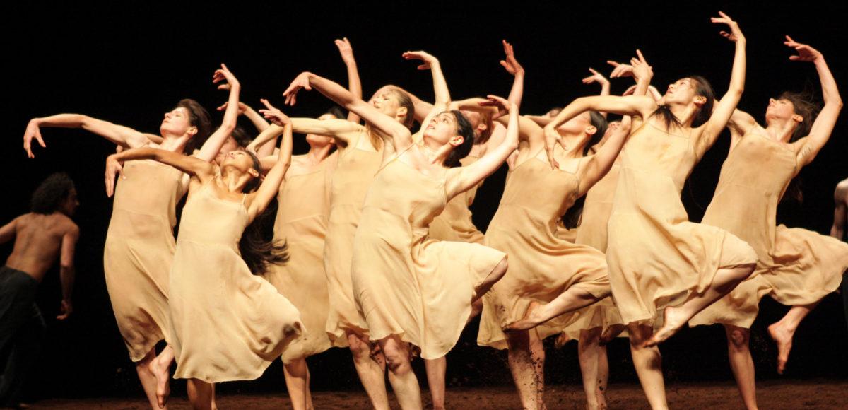 El 29 De Abril Se Celebra El Día Mundial De La Danza